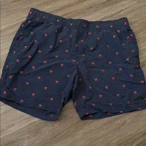 XL north face navy blue shorts